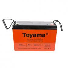 Аккумуляторная батарея TOYAMA NPC 100-12